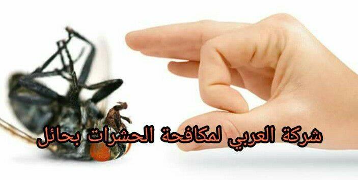 كيفية التخلص من الحشرات بطرق آمنه