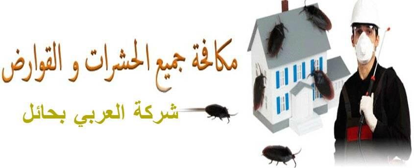 طرق ونصائح لمكافحة الحشرات