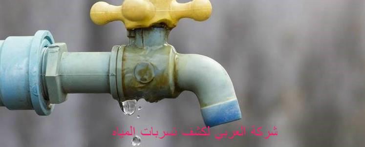 الكشف المبكر عن تسربات ماء المنزل