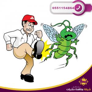 شركة مكافحة حشرات بحائل 1 300x300 - شركة مكافحة حشرات بحائل - 0551154864 - رش مببيدات بحائل