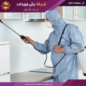 شركة رش مبيدات بحائل 1 300x300 - شركة رش مبيدات بحائل - 0551154864 - مكافحة حشرات بحائل