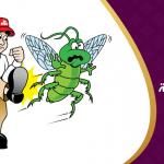 طريقة طرد الحشرات من البيت باستخدام النباتات الطبيعية