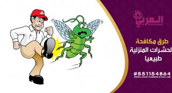 طرد الحشرات من البيت