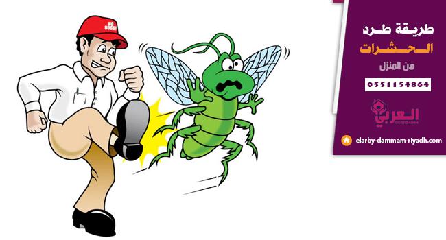 طريقة طرد الحشرات من المنزل