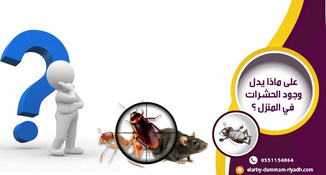 على ماذا يدل وجود الحشرات في المنزل