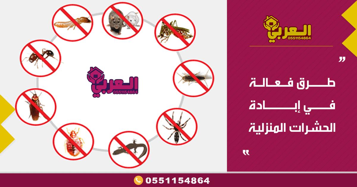 طرق فعاله في ابادة الحشرات المنزليه من شركة مكافحة حشرات بحائل