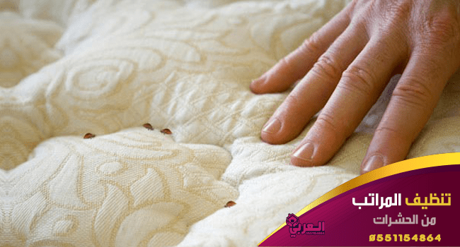 تنظيف المراتب من الحشرات