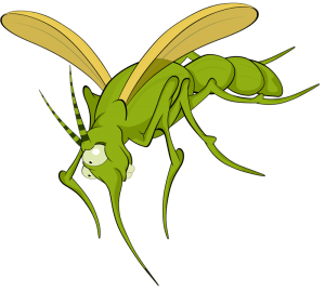 FAVPNG mosquito insect illustration 18TrAnP2 300x269 - شركة رش مبيدات بحائل - 0551154864 - مكافحة حشرات بحائل